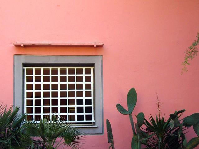IMG_4679 -  pink
