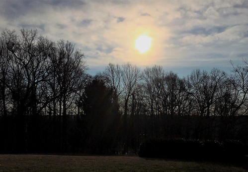 garrisonforest owingsmills maryland sunrise sky clouds trees silhouette iphone htmt minimester19