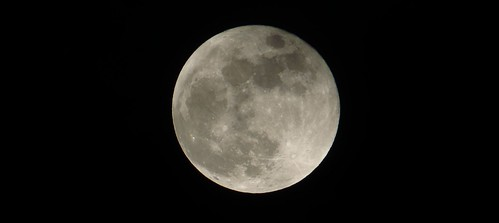 Whole Of The Moon   by trev.pix