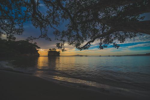 auckland newzealand nz beach