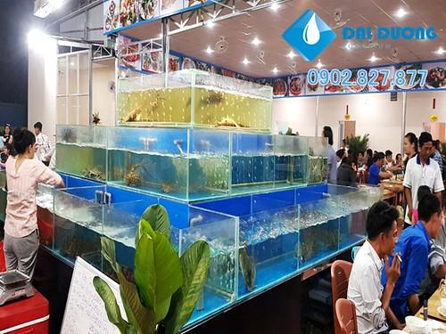 Dàn chứa hải sản nhà hàng phố biển 79 | by Hồ cá kiểng Đại Dương
