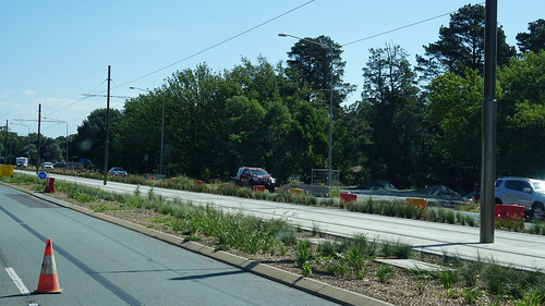 Plants and concrete along the new Canberra Metro