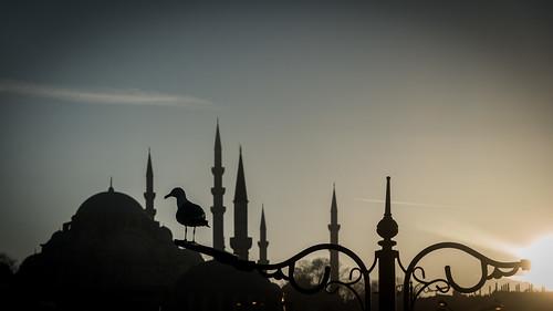 169 2019 24120mm d750 eminönü nikon süleymaniye architecture juxtaposition mosque silhouettes streetlamp sunset superimposed istanbul