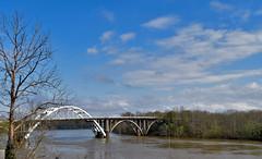 Below the Edmund Pettus Bridge on the Alabama River -- Selma (AL) March 2019