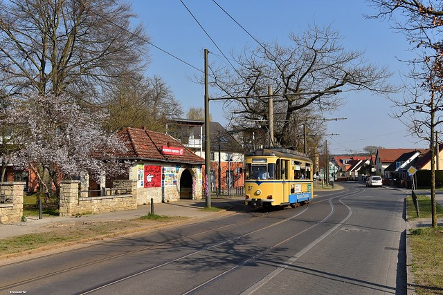 Zur Baumblüte nach Woltersdorf