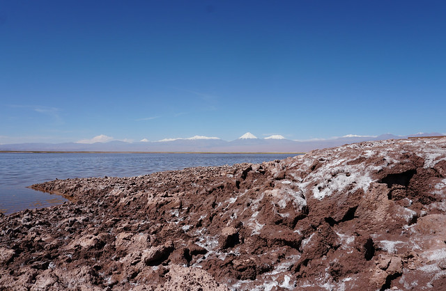 The Tebinquiche Lagoon (Laguna Tebinquiche), the Salar de Atacama, the Atacama Desert, San Pedro de Atacama, Chile.