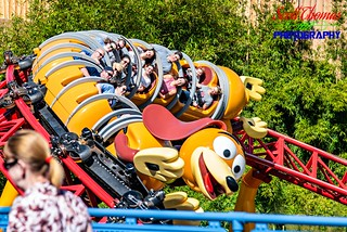 Tailless Slinky Dog | by Scott Thomas Photography