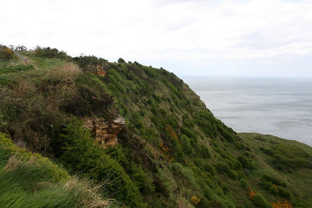 The coast at Ravenscar