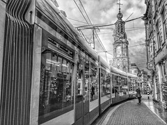 tram ?