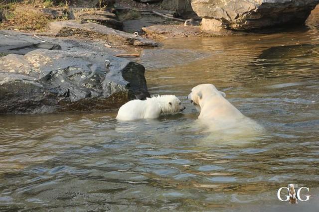Besuch Tierpark Friedrichsfelde 06.04.201930