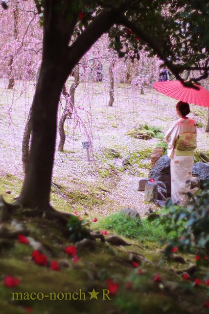Flower Garden of the Tale of Genji - Kyoto Jonangu Shrine