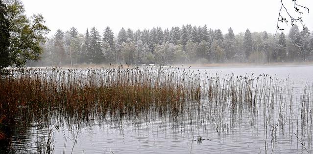 2/2  Brume sur le lac Bad-Bayersoien - Bavière