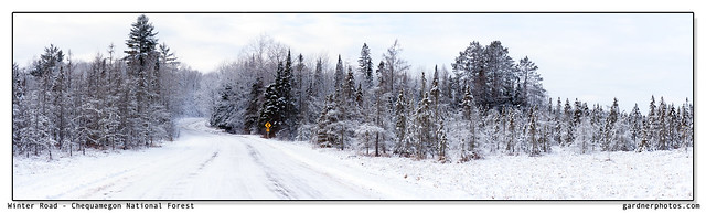Winter Road - Chequamegon National Forest
