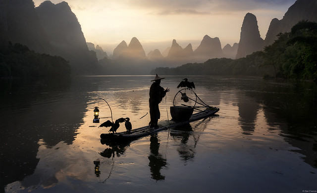 Cormorants and raft