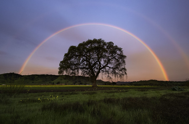 Double Rainbow Sunrise