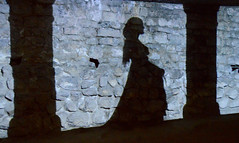 Shadows of the Lady