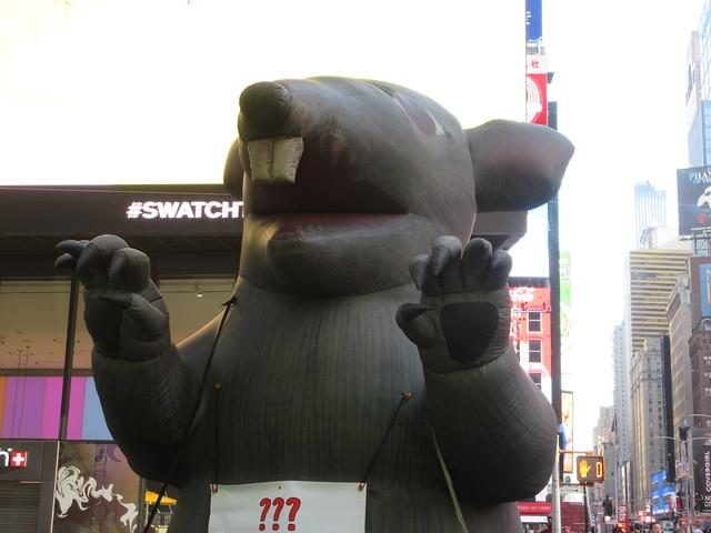 2019 Giant Strike Rat Balloon Corner of 45th St NYC 3699
