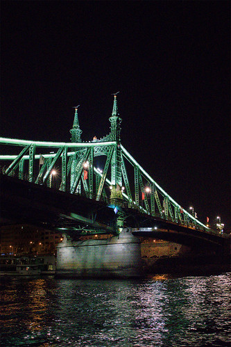 Liberty Bridge from Danube | by dfwatsoneuro