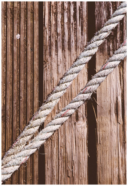 Wood and Rope, Loch Lomond
