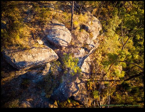 australia trees sydney rock 2018 bluemountains glenbrook newsouthwales au