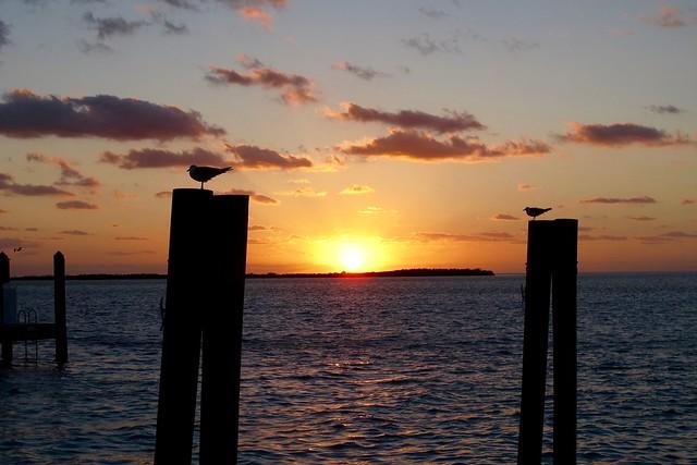 Lever de soleil sur Bimini south