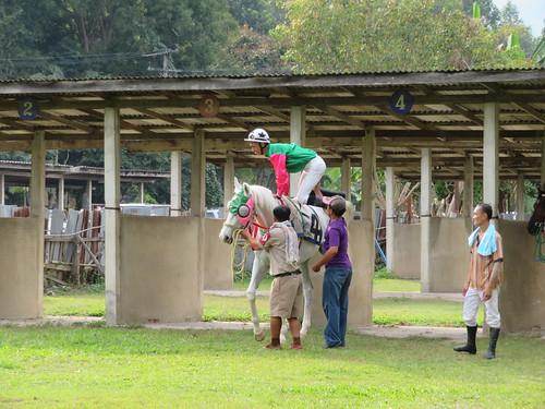 チェンマイ競馬場の馬房の様子