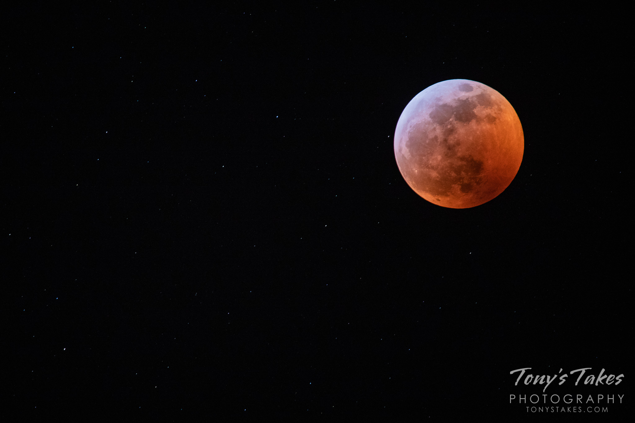 The total lunar eclipse turns the moon red while allowing the stars around it to shine. (© Tony's Takes)