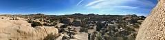 Panorama of Jumbo Rocks campground