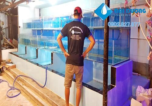 Làm bể hải sản cho nhà hàng thủy mộc | by Hồ cá kiểng Đại Dương