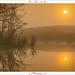 Dune Lake in the Mist by Johan Pannekoek