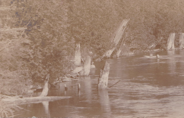NW Pellston MI RPPC c.1908 THE WATERS COLD AT THE OLE SWIMMING HOLE on the Maple River Looks like FUN Photographer Unknown bey initials are EWT4