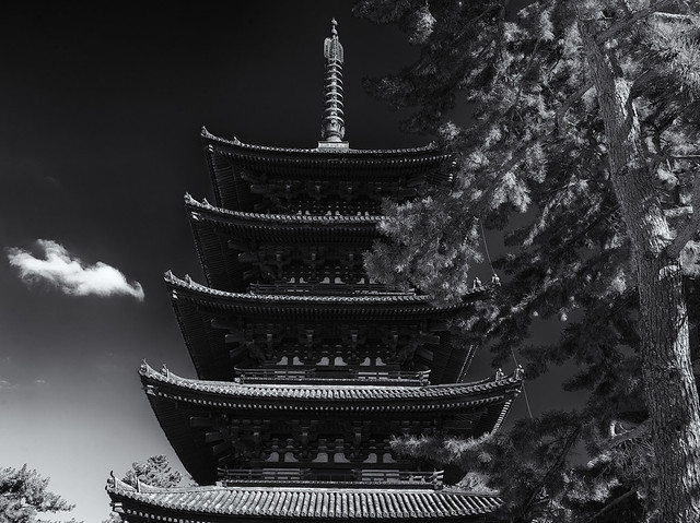 The pagoda and the pine tree