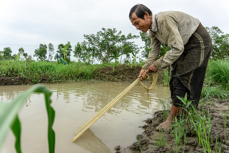 Aung Kyaw fishing in his pond.