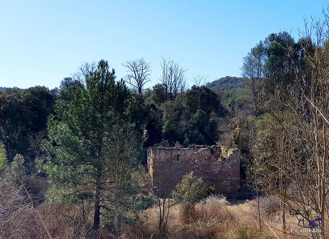 Por los montes de Herrera y el Yermo Camaldulense 10