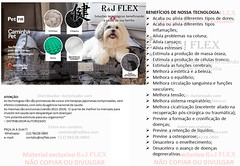 CAMINHA PET - PET FIR - E-ENERGY