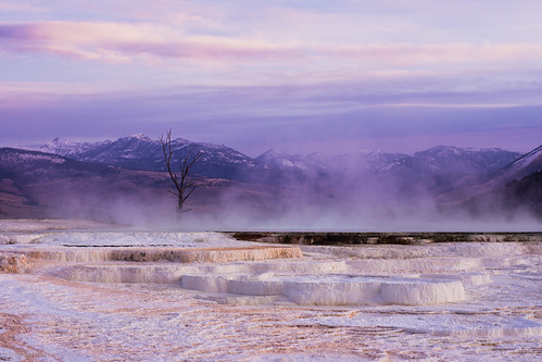 mammothhotsprings nex3 sunrise wyoming yellowstonenationalpark yellowstonenationalparksunrise unitedstatesofamerica us