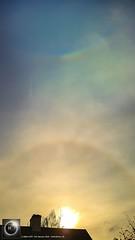 22 Degree Halo & Circumzenithal Arc from Oxfordshire 11/01/19