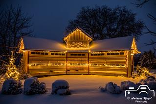 Bienenhaus im Schnee