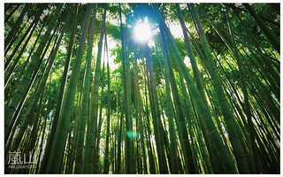 嵐山半日遊-25