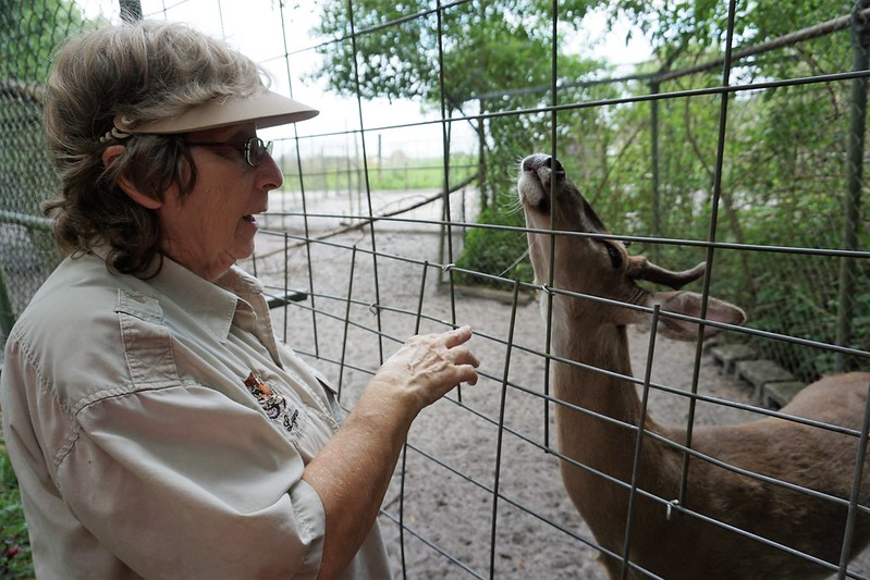 Lynn Wittmeier, Co-Founder of the Wildlife Refuge with John Deer, a White-Tailed Deer at Lions, Tigers & Bears Inc., Arcadia, Fla., April 14, 2019