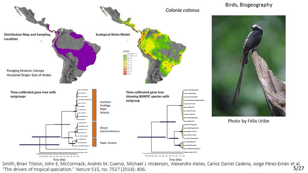 Smith et al. 2014 - Colonia colonus
