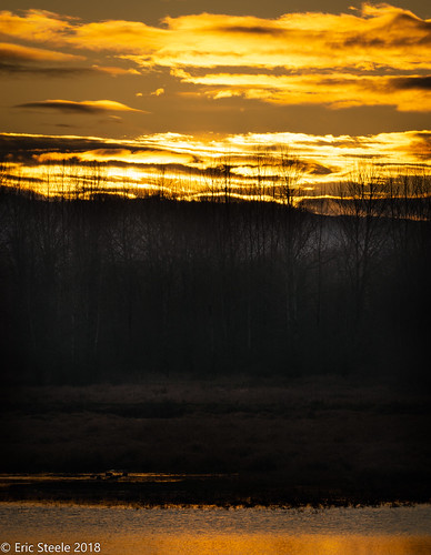 washington ridgefield reserve rfuge orange yellow trees water nikon200500 d7200 nikon ericsteele photography