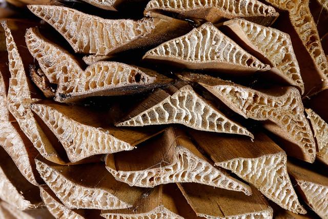 Cut leaf stalks