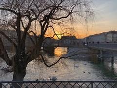 Rousseau Sunset