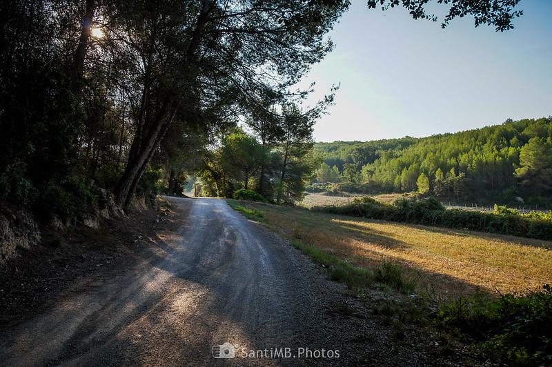 Camino de Viladellops al Barri La Font