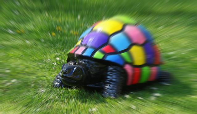 Effet de vitesse pour une tortue !