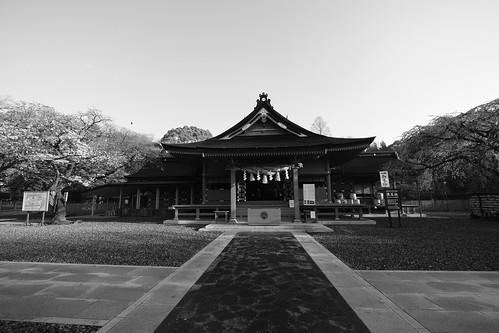 31-03-2019 Fujinomiya, Shizuoka pref (7)