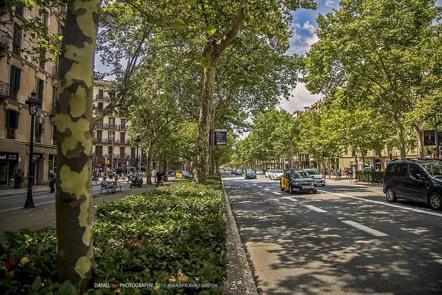 Gran Vía de las Cortes Catalanas, Barcelona