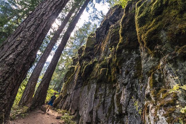 Falls Creek Falls Trail - Washington