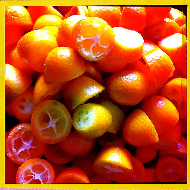 Kumquat #hipstamatic